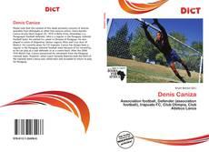 Portada del libro de Denis Caniza