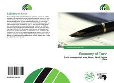 Copertina di Economy of Turin
