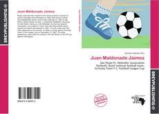 Portada del libro de Juan Maldonado Jaimez
