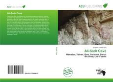 Portada del libro de Ali-Sadr Cave