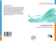 Portada del libro de Gottleuba Dam