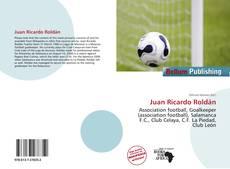 Portada del libro de Juan Ricardo Roldán