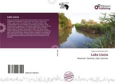 Copertina di Lake Liscia
