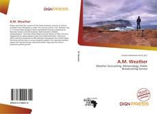 Обложка A.M. Weather