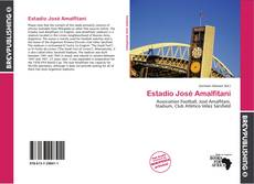 Estadio José Amalfitani的封面