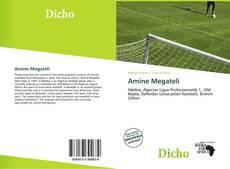Bookcover of Amine Megateli