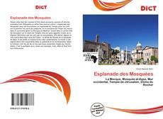 Borítókép a  Esplanade des Mosquées - hoz