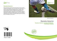 Bookcover of Daniele Amerini