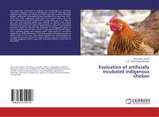 Couverture de Evaluation of artificially incubated indigenous chicken