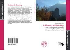Bookcover of Château de Doumely