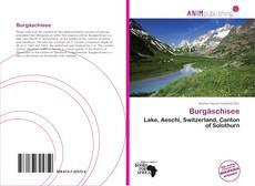 Burgäschisee kitap kapağı