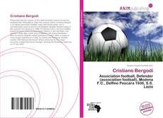 Bookcover of Cristiano Bergodi