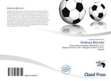 Buchcover von Andrea Bernini