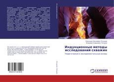 Bookcover of Индукционные методы исследований скважин