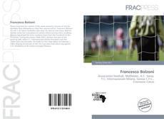 Francesco Bolzoni的封面