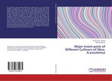 Bookcover of Major Insect pests of Different Cultivars of Okra, A.esculentus