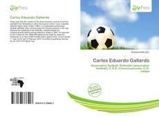 Portada del libro de Carlos Eduardo Gallardo