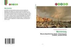 Capa do livro de Montmédy