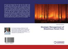Copertina di Strategic Management of Disastrous Forest Fires