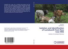 Bookcover of Isolation and Identification of Lactobacilli from Raw Cow Milk