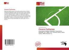 Borítókép a  Cesare Cattaneo - hoz