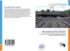 Capa do livro de Morisekinoshita Station