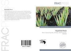 Bookcover of Bayfield River
