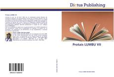 Bookcover of Protais LUMBU VII