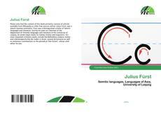 Julius Fürst的封面