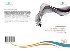 Bookcover of Llyn Trawsfynydd