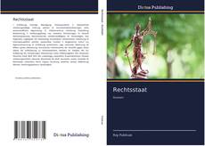 Bookcover of Rechtsstaat