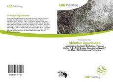 Bookcover of Abiodun Agunbiade