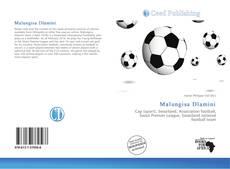 Bookcover of Malungisa Dlamini