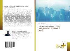 Buchcover von Eglises Apostasiées : Quels sont les autres signes de la Bête?