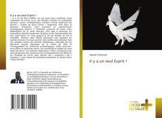 Bookcover of Il y a un seul Esprit !