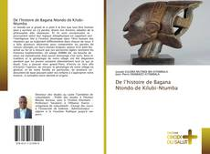 Buchcover von De l'histoire de Bagana Ntondo de Kilubi-Ntumba