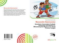Bookcover of Mzwandile Ndzimandze