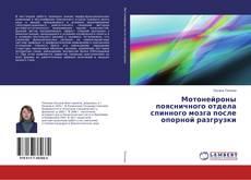 Bookcover of Мотонейроны поясничного отдела спинного мозга после опорной разгрузки