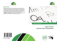 Bookcover of Igor Kusin