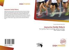 Jaysuma Saidy Ndure kitap kapağı