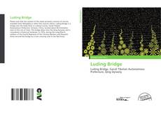 Bookcover of Luding Bridge