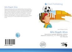Bookcover of Júlio Regufe Alves