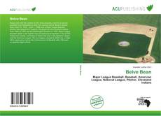 Bookcover of Belve Bean