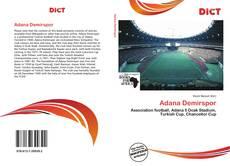 Adana Demirspor kitap kapağı