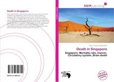Bookcover of Death in Singapore