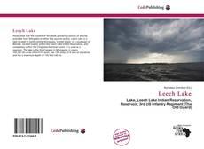 Bookcover of Leech Lake