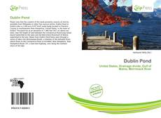 Bookcover of Dublin Pond