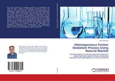 Bookcover of Heterogeneous Fenton Oxidation Process Using Natural Martite