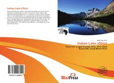 Bookcover of Indian Lake (Ohio)