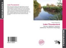 Lake Thunderbird的封面